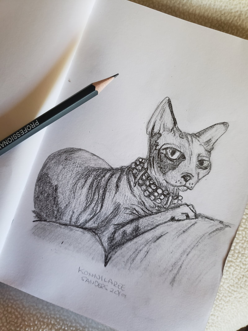 #hairless #cat #sketch