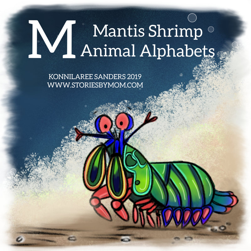 #animalalphabets #mantisshrimp â€‹#letterm #seacreatures #ocean #animals #cute #kidlitart #digitalart #illuastation #funfacts #processvideo #coloringpage #kidstuff #storiesbymom