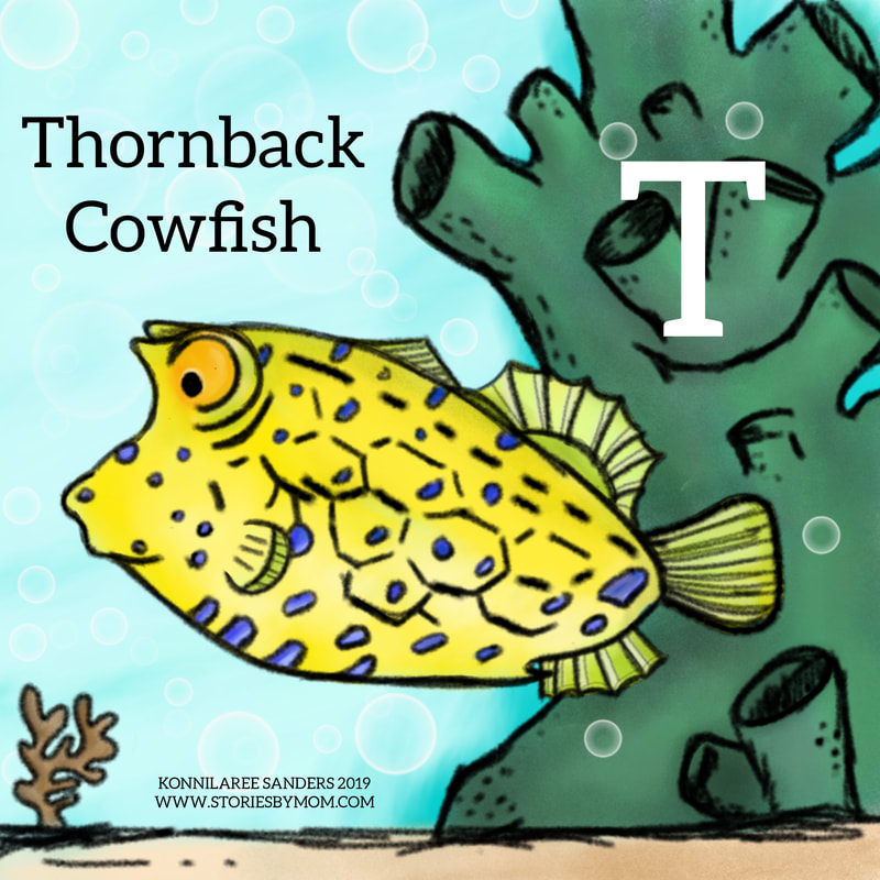 #thornbackcowfish #animalalphabets #letterT #seacreatures #ocean #animal #digitalart #illustration #coloringpage #processgif #funfacts